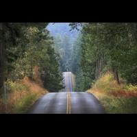Country road, Washington, USA :: RDSsanjuanisland50588jpg