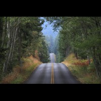 Country road, Washington, USA :: RDSsanjuanisland50571jpg
