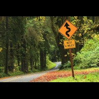 Country road, Washington, USA :: RDShohrainforestwa60186jpg