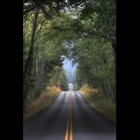 Country road, Washington, USA :: RDSsanjuanisland50577jpg